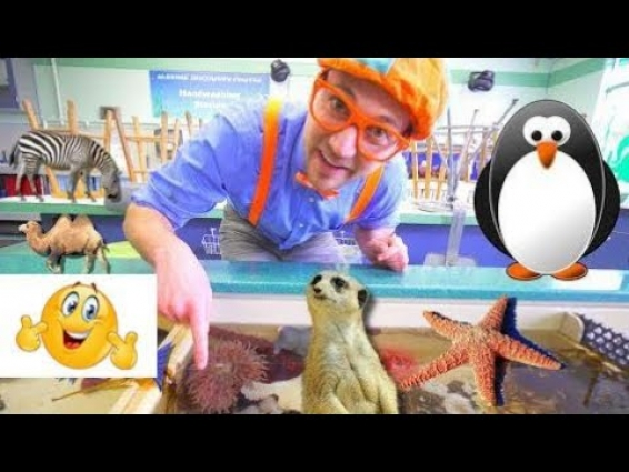 Blippi at the Zoo   Learn Animals for Children and Toddlers 2018 New Youtube  Ep 462