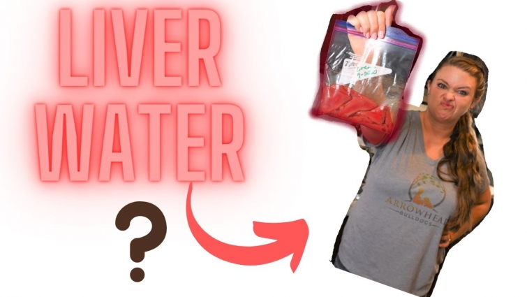 How to make liver water and Why you need it for your puppies!